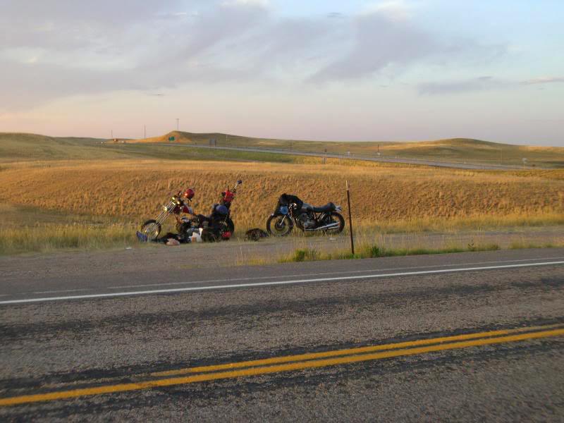 bikes-field