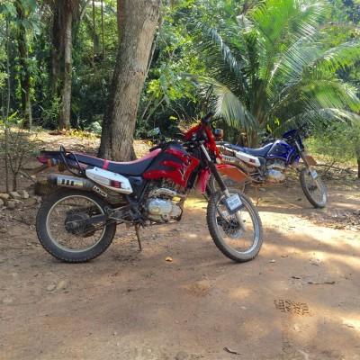 Bikes at Bocawina