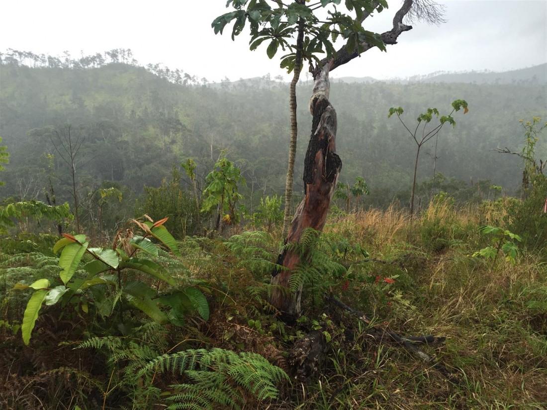 Mayan Mountian ridge