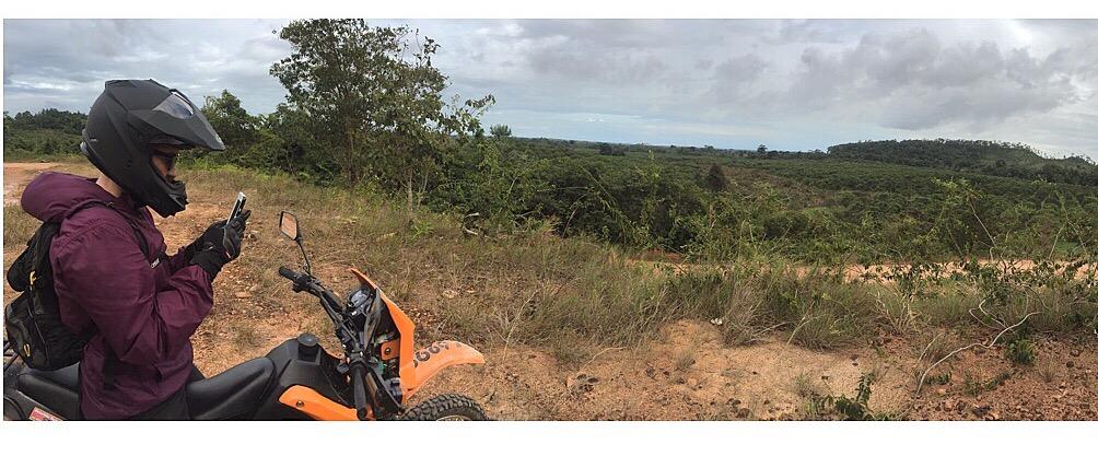 Waldo Quarry Orange Groves