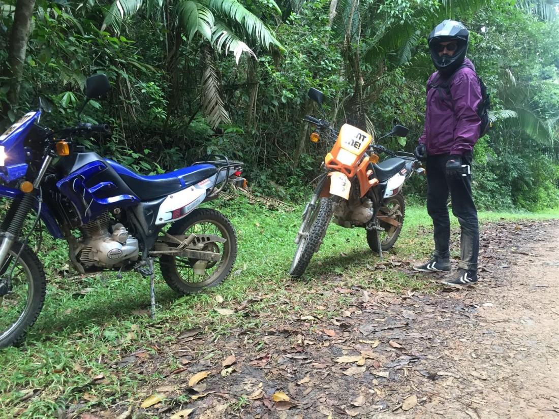Waldo jungle bike