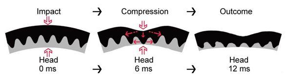 conehead-technology